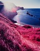 (danny.rowton) Tags: infraredfilm aerochrome kodakeir 120 film analog invisiblelight pentax6x7 falsecolour cove landscape beach mediumformat dannyrowton