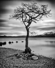 The Tree again (John Farnan Photography) Tags: longexposure scotland fineart lochlomond scottishhighlands scottishloch 10stop nd110 scottishlochs millarochybay locjlomond
