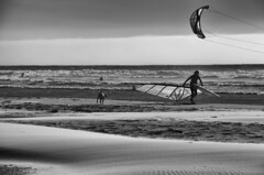 5683.2 Windsurf Dog B&W (eyepiphany) Tags: surf surfing windsurfing oregoncoast manzanita manzanitabeach manzanitaoregon windsurfingontheoregoncoast