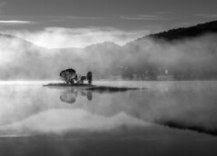 norwegian romance (explored) (Soenke HH) Tags: blackandwhite bw mist lake mountains tree nature water monochrome norway fog reflections landscape island photography see norge wasser mood nebel natur north skandinavien silhouettes norwegen olympus explore scandinavia schwarzweiss landschaft wald bume schatten spiegelung hordaland stimmung e5 schnheit romantik dunst reflektionen silhouetten einmalig swd1260 explore08feb13