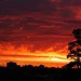 """Sunset in Melbourne, Australia • <a style=""""font-size:0.8em;"""" href=""""http://www.flickr.com/photos/89702952@N05/8456705789/"""" target=""""_blank"""">View on Flickr</a>"""