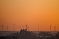 IMG_4831 (Tarun Chopra) Tags: india sunrise windmills gurgaon rajasthan touristattractions canon7d rajasthaninwinters
