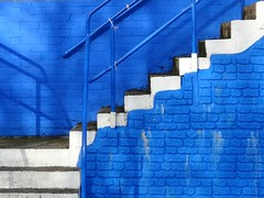 Meadow Park, Irvine (poity_uk) Tags: blue white stairs scotland stand football soccer steps stairway treppe juniors irvine ayrshire tribne fitba irvinemeadow medda sjfa scottishjuniorcup irvinemeadowxifc
