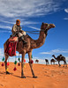 Camel (TARIQ-M 2) Tags: art texture sahara landscape sand waves pattern desert ripple patterns dunes wave ripples camels riyadh saudiarabia dahna canoneos5dmarkii tariqm aldahna tariqalmutlaq