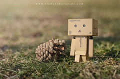 Friendly Pinecone (oneflashatatime) Tags: plaza city nature grass amazon walk michigan detroit hart pinecone riverwalk grassy danbo toyphotography revoltech danboard minidanboard