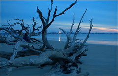 Moment (gatorgalpics) Tags: lighthouse jekyllisland stsimonslighthouse bluesunrise driftwoodbeach
