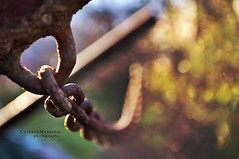 Da tempo remoto (Celeste Messina) Tags: light art yellow photo nikon focus rust colours dof artistic bokeh rusty ring chain giallo colori carretto handcart luce ruggine celeste anello catena arrugginito d5000