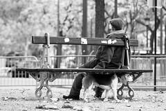 Paris (betinho_had) Tags: life street city friends people blackandwhite dog man paris france amigos art co branco de photography europa europe foto pics cotidiano cities frana preto streetphoto rua homem pretoebranco parisfrance