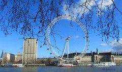 A touch of nature on London Eye ;-) (Patrizia Ilaria Sechi) Tags: blue trees england sky london eye buildings view victoria effect embankment tridimensional platinumheartaward