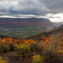 Colores de otoo en Navarra (LXVII) (Angel Villalba) Tags: autumn red green nature colors yellow landscape vegetation navarra ocher