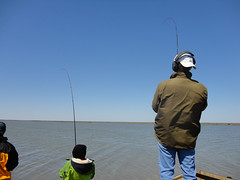 DSC00718.jpg (Castaway Lodge) Tags: port bay fishing texas lodge flats trout oconnor redfish saltwater seadrift texasfishinglodge portoconnorfishing seadriftbayfishing