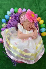 Happy Easter (Everyday @dventures) Tags: family baby holiday cute studio easter nikon infant basket dress crying niece eggs d3200