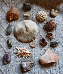 Gifts from the sea (and the earth) (LaWendeltreppe) Tags: shells home stones snailmail