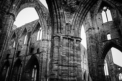 "Tintern Abbey • <a style=""font-size:0.8em;"" href=""http://www.flickr.com/photos/32236014@N07/8636091236/"" target=""_blank"">View on Flickr</a>"