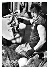 Fishing - Port Andratx (King Grecko) Tags: blue sea fish color colour detail rock contrast canon boats eos boat seaside fishing spain rocks colours dof catchycolours perspective spanish 5d nautical mallorca catchy atmospheric andratx portandratx ipad mallorquin andraitx flickraward colourmania 5dmarkiii snapseed eos5diii