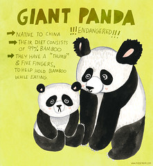 102: Giant Panda (My Zoetrope) Tags: cute animals illustration project painting giant panda day drawing days 365 sketches zoetrope kawaiia
