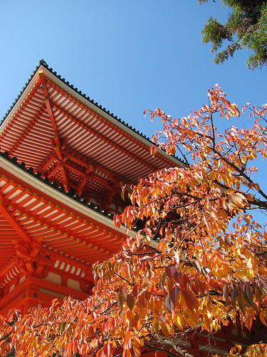 0919 Autumn Temple