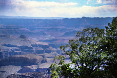 Grand Canyon steep-sided canyon carved by the Colorado River in the U.S. state of Arizona in North America 1987 099 (photographer695) Tags: grand canyon steepsided carved by colorado river us state arizona north america 1987