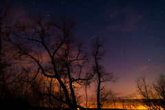 DSC_0223 (djwakeman) Tags: longexposure sky night stars nikon open 14 wide 24mm meteor d800 lyrid