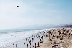 hello Pacific Ocean (Gregory Wu) Tags: santa film zeiss la kodak contax monica carl rx variosonnar colorplus