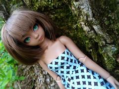 She's here! (PuffsxPlus) Tags: brown ball doll tan diana bjd abjd jointed yosd saintbloom