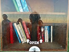 Autoretrato a lo Vivian Maier ([Mara JPM]) Tags: libros books autoretrato vivianmaier portrait reflejo reflected