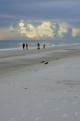 In Pairs (Tomasz Jan) Tags: pairs beach couple riding walking swimming birds