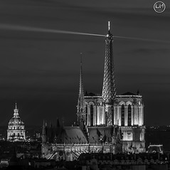NB Paris (apparencephotos) Tags: bw noiretblanc blackandwhite paris notredamedeparis toureiffel eiffeltower invalides monument