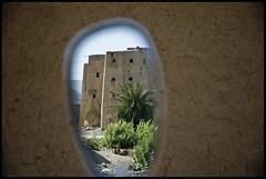DSC_6601 (Sgaffo) Tags: yemen travelling 20072008 socotra