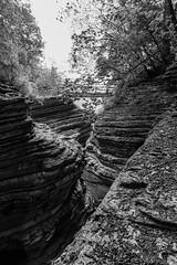 Brent de l'Art (Agnolo) Tags: nikon d7100 1685 nikkor veneto belluno sanantoniotortal valbelluna brentdelart canyon torrente caves grotta strati layers rocce geologia rocks geology biancoenero blackandwhite