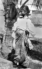 Girl standing next to a palm tree, Philippines, ca. 1920-1940 (J. Tewell) Tags: filipina old philippines