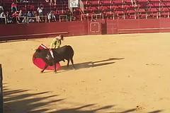 Torero Javier Jimenez. La Palma del Condado. Huelva (G de Tena) Tags: toros torero plaza corrida musica capote albero