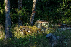 The Last Hunter's Truck (garshna) Tags: abandoned rusty mossy brush truck nohunting sign