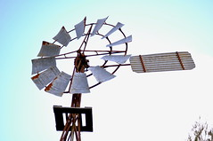 8 foot Intercolonial Boring Company (IBC) Geared Simplex windmill; private collection, Australia (sarracenia.flava) Tags: ibc intercolonial boring company geared simplex windmill australia intercolonialboringcompany