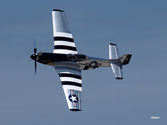 160417_08_NSB_Quicksilver (AgentADQ) Tags: new smyrna beach florida skyfest airshow air show airplane plane aerobatic north american p51d mustang warbird quick silver quicksilver