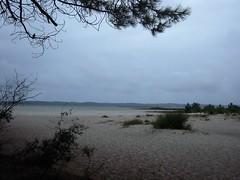 ILE DE LA BANANE (marsupilami92) Tags: france frankreich sudouest aquitaine médoc gironde 33 tourisme vacances hourtin