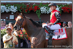 A.P. Indian Forego (Spruceton Spook) Tags: saratoga horseracing horses apindian forego joebravo