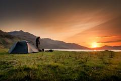 JHF0003796 (janhuesing.com) Tags: rot inverie scotland wildlife hiking highlands mallaig knoydart landscape nature outdoor