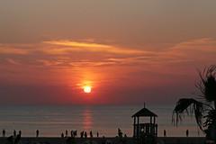 'Chillin' at Mango's, Zandvoort (eleni m) Tags: september sunset beach sea heatwave hittegolf zandvoort seasideresort hot warm palmtree palmboom people mensen silhouettes outdoor sky clouds sun water reflection