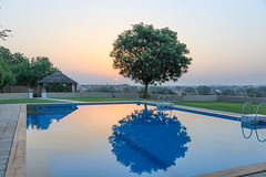 107A1142 (Tarun Chopra) Tags: swimmingpool sunrise mandawa rajasthan photography 5dsr canon5dsr