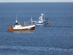 Moremma - Fruitful Bough (allyB803) Tags: morayfirth fishingboat squidfishing