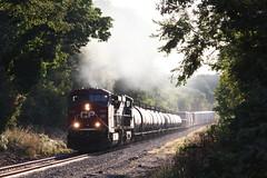 Carbon Coated Foliage (MILW157) Tags: cp rail canadian pacific watertown sub train track railroad ns mp118 oconomowoc row