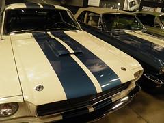 Shelby9-23-16_018 (Puckfiend) Tags: shelby cobra lasvegas carrollshelby cars automobile