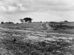 Crompton Moor (Missy Jussy) Tags: cromptonmoor shaw hills fields oldham landscape lancashire lane land house trees horizon walkinglandscape mono monochrome blackwhite blackandwhite macro