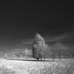 just for a moment (Jon Downs) Tags: trees sky bw cloud white snow black tree art field clouds digital canon downs landscape ir photography eos photo jon flickr artist photographer image picture pic photograph infrared roade 400d jondowns northahmptonshire