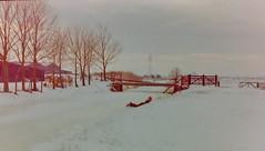 dutch winter (10) (bertknot) Tags: winter dutchwinter dewinter winterinholland denbommel winterinthenetherlands hollandsewinter denbommelandsurrounds winterinnederlanddutchwinter