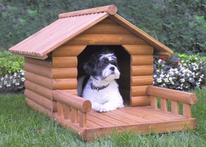casa-perro