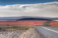 Iceland in red (Fil.ippo) Tags: red nature colors landscape island iceland nikon land rosso colori filippo islanda d5000 filippobianchi