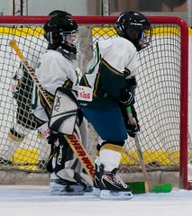 DSC_64610 (michaelinhkong) Tags: canada hockey daniel ottawa feb13 metcalfejets 16feb13
