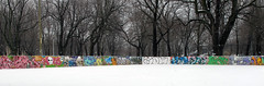 parc lafontaine graffiti boards (alanah.montreal) Tags: park winter snow montreal hiver neige parclafontaine